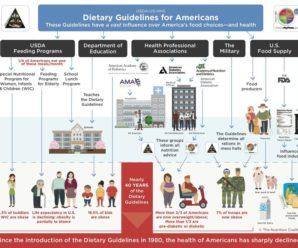 Диетические рекомендации США / US Dietary Guidelines for Americans