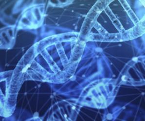 Как кетоны влияют на наши гены